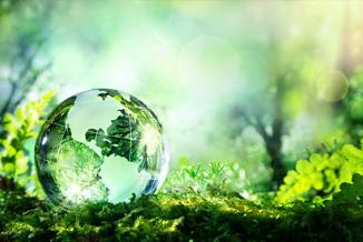 מצב חירום סביבתי ובריאותי בבריטניה - הארגון לחקלאות אורגנית